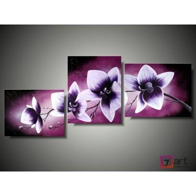 Модульные картины орхидеи, ART: fosm_0126